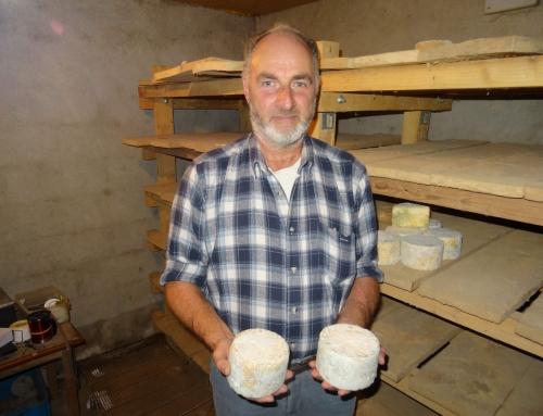 L'artisou : le fromage emblématique du Velay